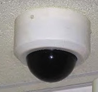Simulated Dome Camera from American Theft Prevention Products