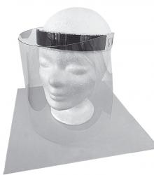 Checkpoint Protective Visor from American Theft Prevention Products